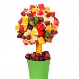 Фруктовое дерево с фруктами